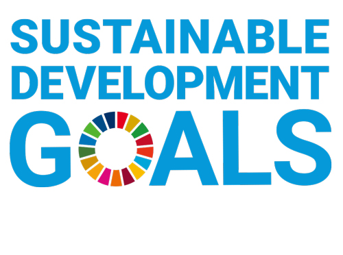 SDGs研修ワークショップ